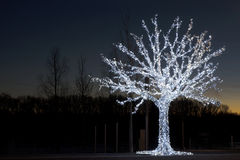 The electric Christmas tree Royalty Free Stock Image