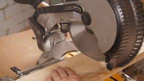 Electric circular saw cutting piece of wood in sawmill stock footage