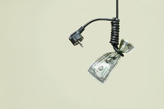 Electric cord, loop and dollar Royalty Free Stock Photo