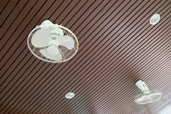 Electric fan on ceiling Stock Images