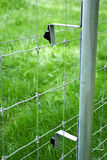 Electric fence. Detail, fencing a green grass property Royalty Free Stock Image