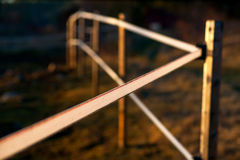 Electric fence in evening light Stock Photography
