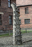Electric fence in former Nazi concentration camp Auschwitz I, Royalty Free Stock Photo