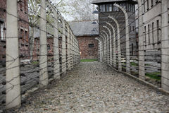 Electric fence in former Nazi concentration camp Auschwitz I Royalty Free Stock Photography