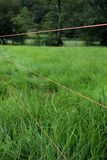 Electric Fence Wire Stock Photo