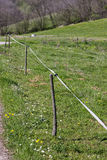 Electric fence wire on a green meadow Royalty Free Stock Photos