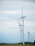 Electric Generating Windmills Royalty Free Stock Photos