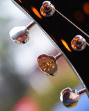 Electric Guitar. Headstock of an Electric Guitar Royalty Free Stock Photo