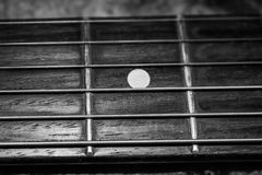 Electric Guitar Neck and fret board Stock Image