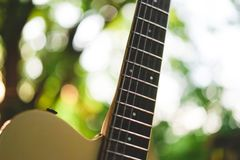 Electric guitar 12th fret and neck with natural background. Electric guitar 12th fret and neck royalty free stock photography