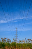 Electric high voltage power Royalty Free Stock Photography