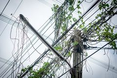 Electric and intricate wires with green ivy, electric pole risk royalty free stock image