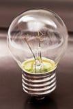 Electric lamp. Close up. makro Stock Image
