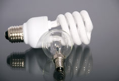 Electric lamp and luminescent lamp. Two Electric light bulb by a large plan Stock Image