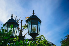 Electric lamps, two located in the backyard. Stock Photos