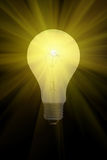 Electric light bulb burning. On a black background royalty free illustration