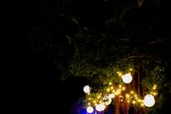 Electric light bulb decoration on big green tree in the garden in wedding event fair. royalty free stock photography