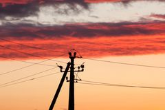 Electric line against colorful sky at sunset. Electric power line against colorful sky at sunset Stock Image