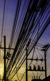Electric line in sunset Royalty Free Stock Photography