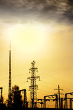 Electric line in sunset Stock Image
