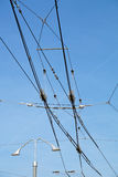 Electric lines necessary for the movement of trolley buses. Royalty Free Stock Photo