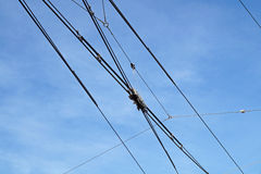 Electric lines necessary for the movement of trolley buses. Royalty Free Stock Photos
