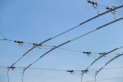Electric lines necessary for the movement of trolley buses. Stock Photography