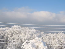 Electric lines in a sunny mountain Stock Image