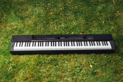 Free Electric Piano On Green Grass Stock Image - 96773641