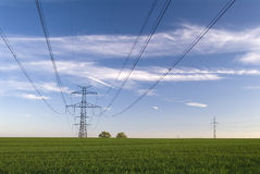 Electric pole. In green farm field Stock Photos