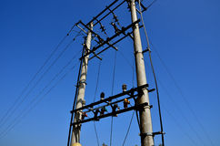 Electric pole and blue sky Stock Image