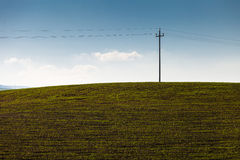 Electric pole in the countryside Royalty Free Stock Image