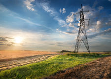 Electric pole in the field Stock Photo