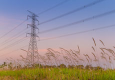 Electric pole in the field Royalty Free Stock Images