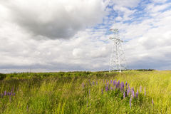 Electric pole, field Stock Images
