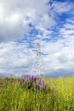 Electric pole, field Royalty Free Stock Image