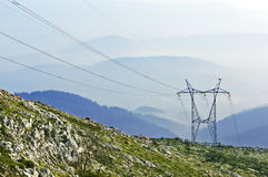 Electric pole in nature Royalty Free Stock Image