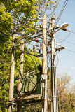 Electric pole with the transformer in the forest, power industry Royalty Free Stock Photography