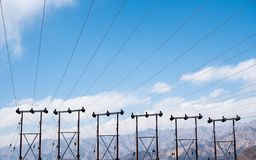 Electric poles and cables with blue sky background in Ladakh city Stock Photo