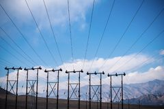 Electric poles and cables with blue sky background in Ladakh city Stock Image