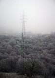 Electric poles in winter Stock Image