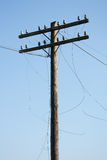 Electric post power pole. Wire breakage. Royalty Free Stock Images