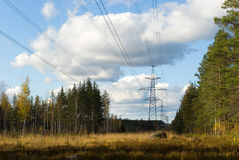 Electric power line. In an autumn forest Stock Photos
