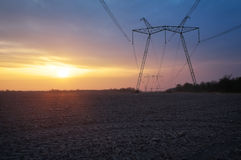 Electric power line and field. At sunrise Royalty Free Stock Image