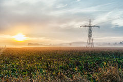 Electric power lines and pylons at sunset Royalty Free Stock Photos