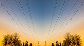 Electric power lines and trees Royalty Free Stock Photography