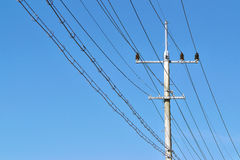 Electric power pole and lines Stock Images