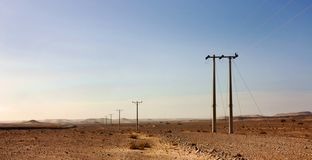 Electric power poles in desert of Jordan, high voltage powerlines, early morning in wilderness. Electric power poles in desert of Jordan. High voltage stock photo