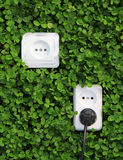 Electric power receptacle on a green grass background Stock Photo