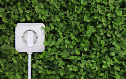 Electric power receptacle on a green grass background Stock Image